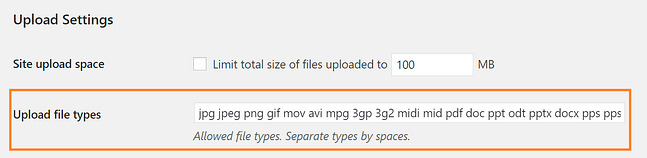 WordPress multisite upload file type settings
